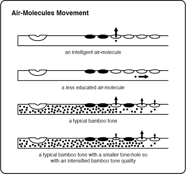 Where do Air-Molecules leave the flute