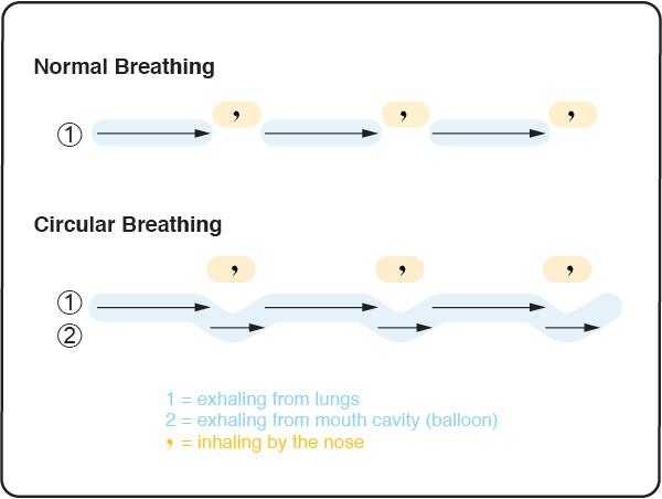 Normal Breathing vs. Circular Breathing
